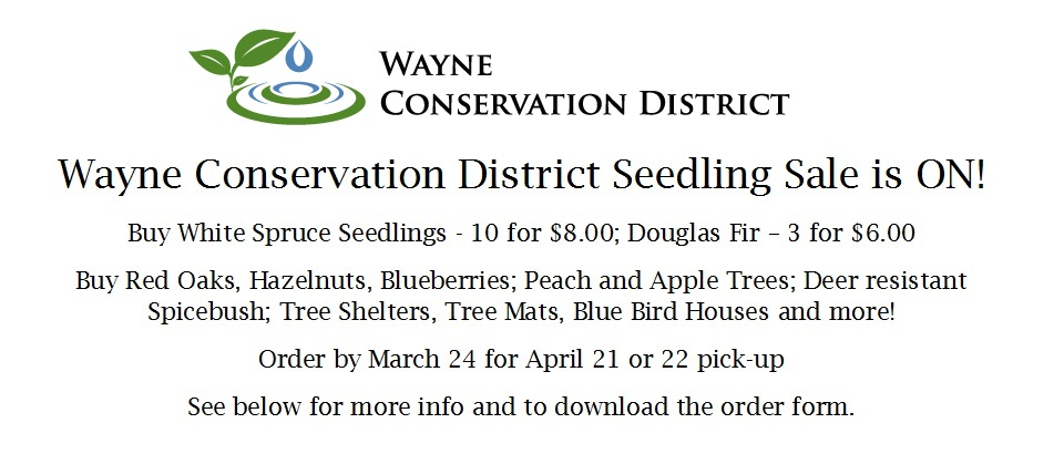 WCCD Seedling Sale 2017