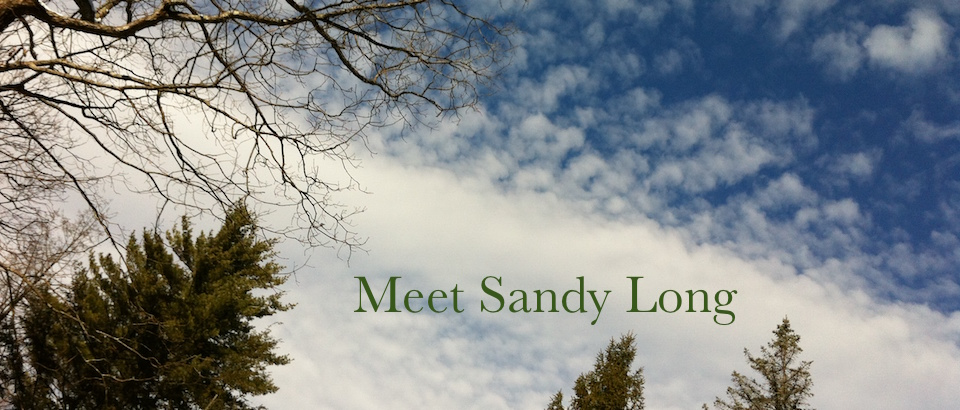Photo of trees clouds and sky by Sandy Long.