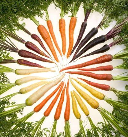 Today carrots come in a variety of colors